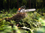 Chainsaw MS362 C-M (STIHL)